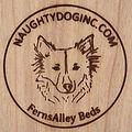 Naughty Dog Inc.
