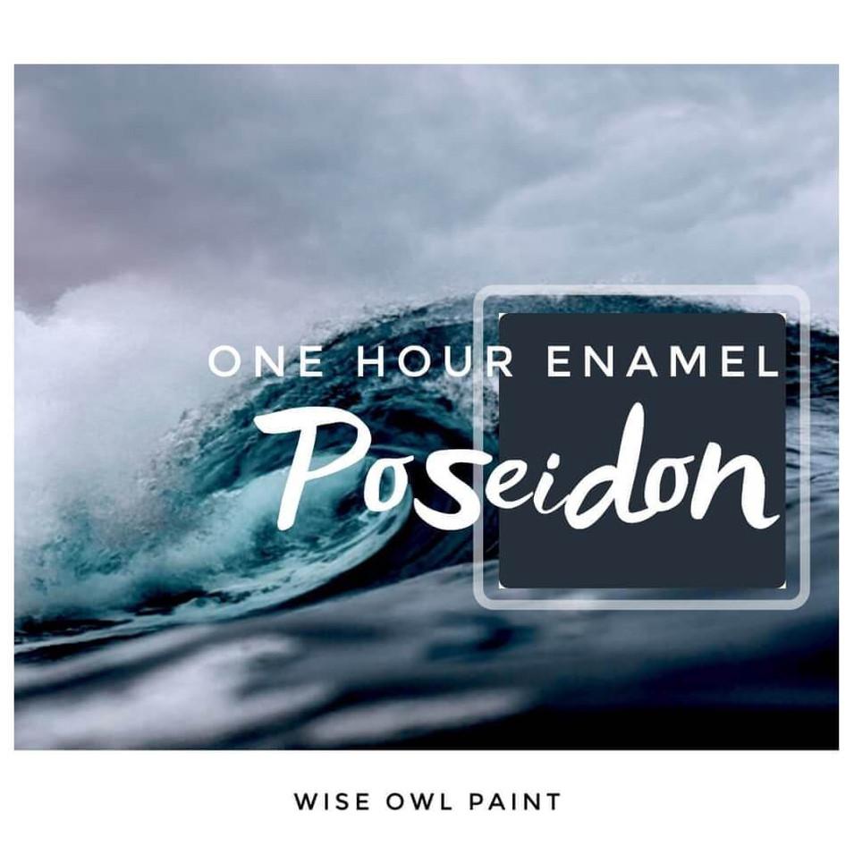 CRD.WiseOwl.OneHourEnamel.Poseidon2.jpeg