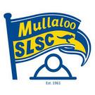 MSLSC logo.jpg