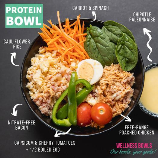 Protein Bowl Break down.jpg