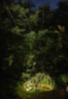 Copia di DSCF9147oscar-2.jpg