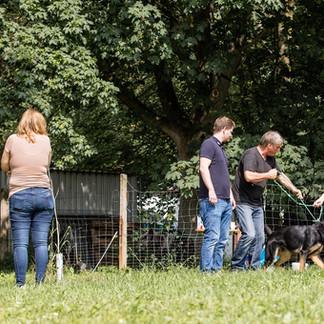 Seminar Hundezentrum Frohnsdorf