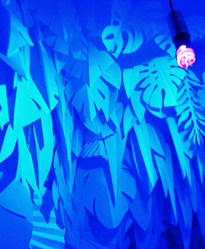UV FOREST
