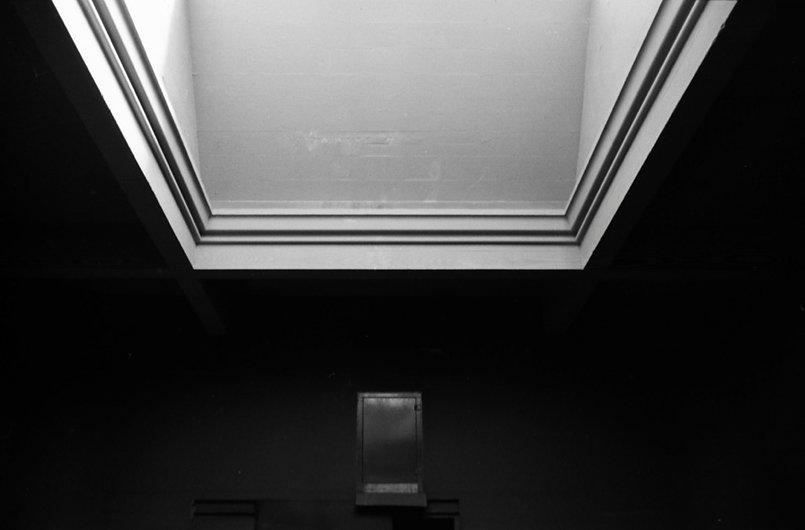 pachy-ceiling.jpg