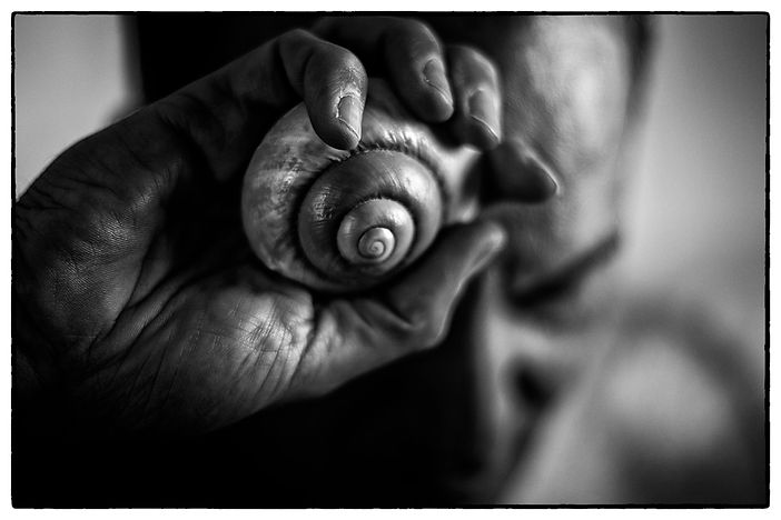 shell_dimitris.jpg