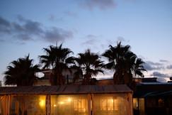 night taverna.jpg