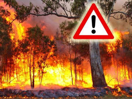 Verbot von Feuerentzünden und Rauchen im Wald!