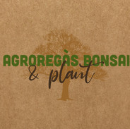 Agroregàs Bonsai & Plant