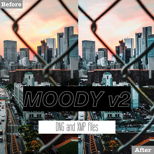 free moody v2 presets.001.jpeg