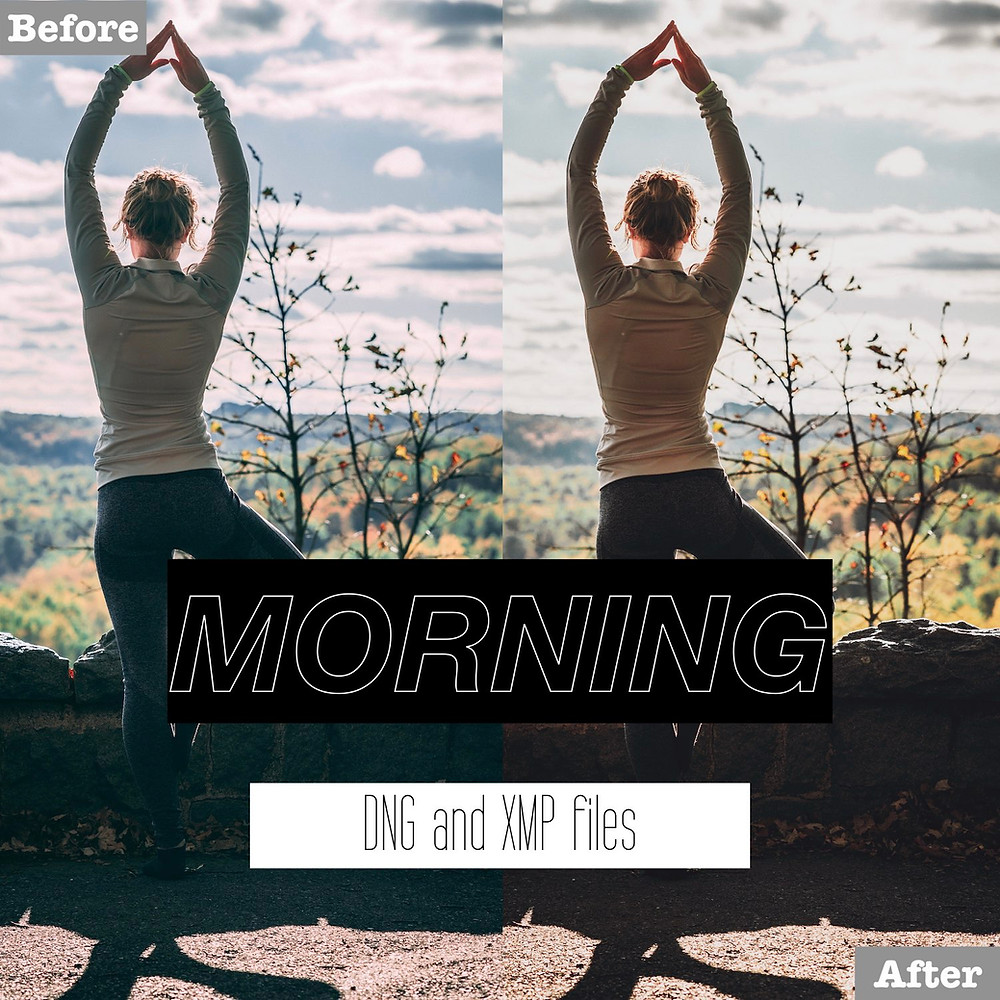 Morning and Daily Lightroom Presets