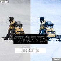 Free Frozen Lightroom Presets