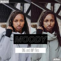 Free Moody Lightroom Presets