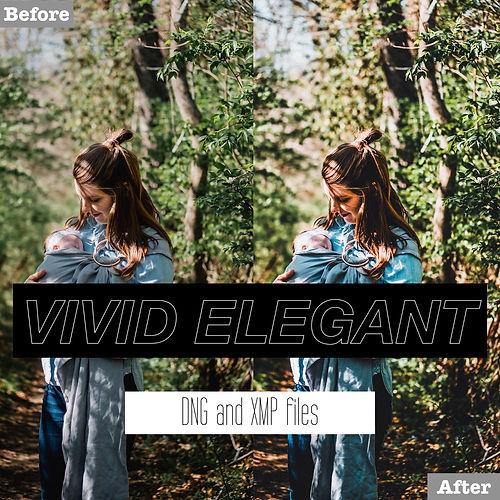 free vivid elegant presets.001.jpeg