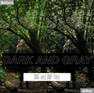 Free Dark and Gray Lightroom Presets