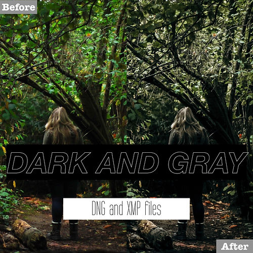 dark and gray lightroom presets for free