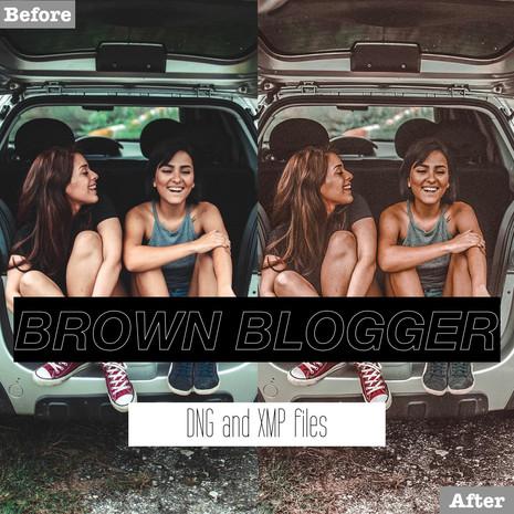 Brown Blogger Lightroom Presets