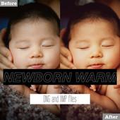 Free Newborn Warm Lightroom Presets