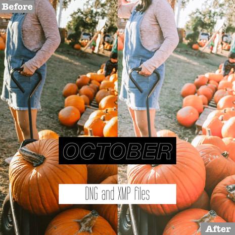 October Lightroom Presets