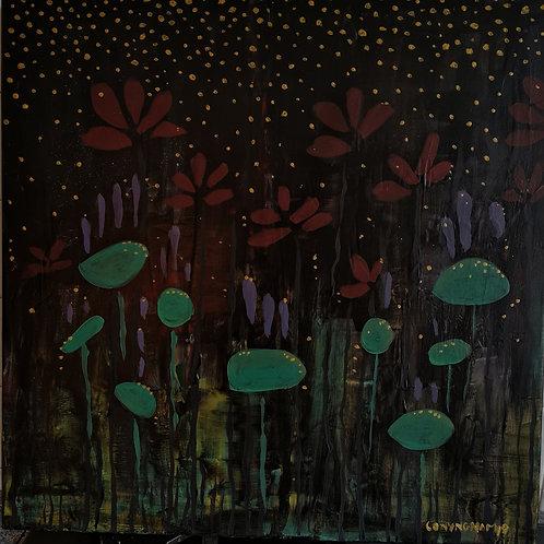 """""""Awake in the Night Field"""""""