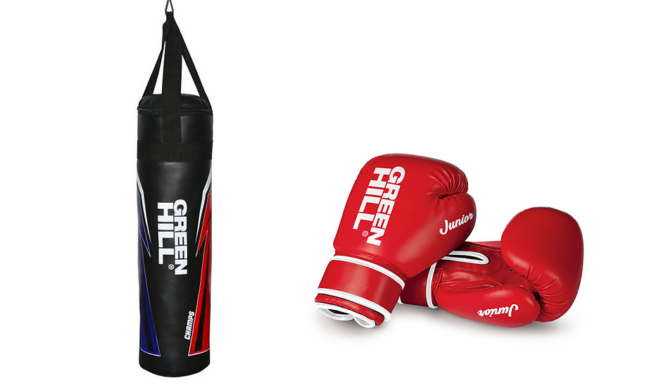 Junior Punching Bag and Gloves Set
