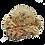 Thumbnail: Bath Whip-Cookie Dough