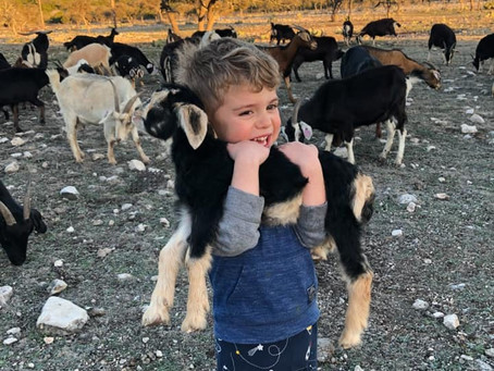 Here's What It Takes To Get My Goat!