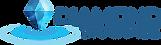 Diamond Drainage Logo Without background