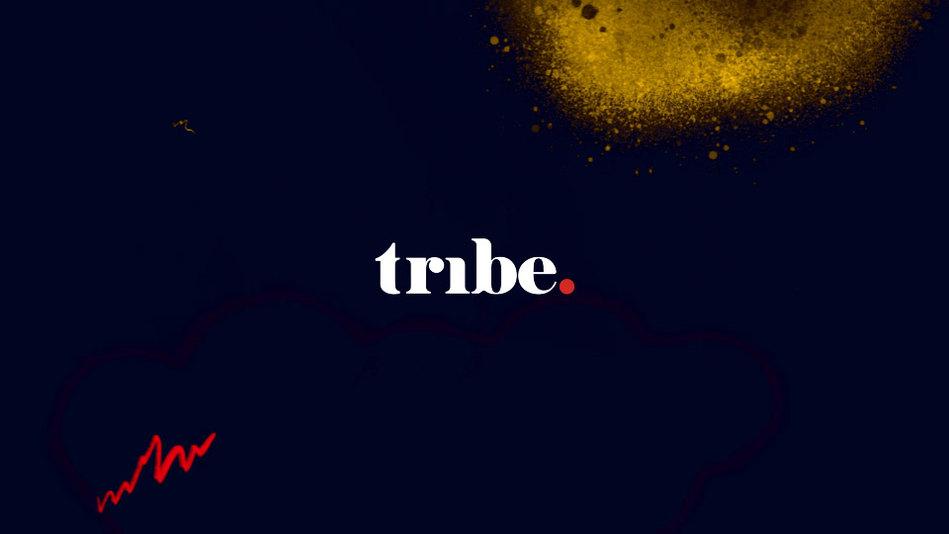 Логотип и айдентика tribe media