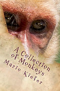 A_Collection_of_Monk_Cover_for_Kindle.jp