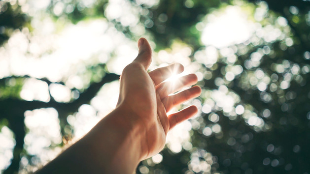 selective-focus-photography-of-hand-1654