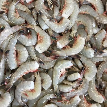 Shrimp Stock Recipe