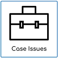 new-case issues.png