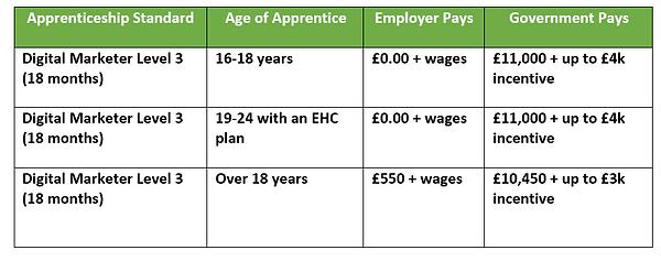 Apprenticeship Digital Marketer Funding.