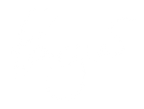 pagus-logo.png