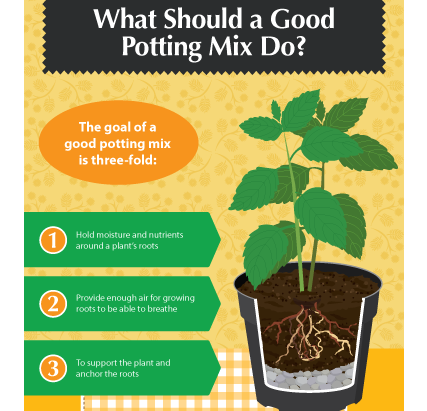 Beginner's Guide To Potting Mixes