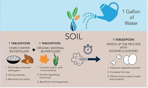 Recipe for making your own Bio-Fertilizer