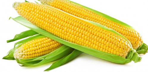 Ears of corn each