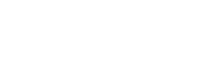 LOGO_DIALOGMINDS_2020_Update_quer_white.