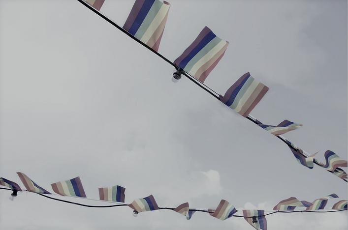 pride flags  (2).png