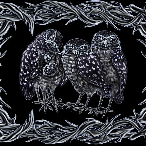 Burrowing Owl Mens T-Shirt