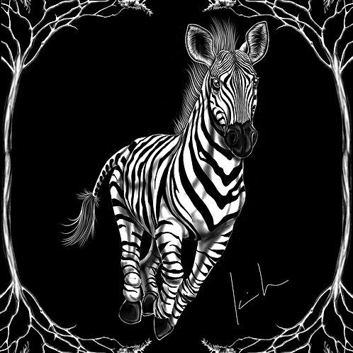 Zebra Mens T-Shirt