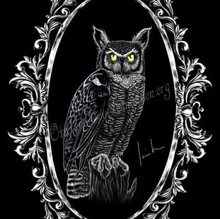 Great Horned Owl Watermark.jpg