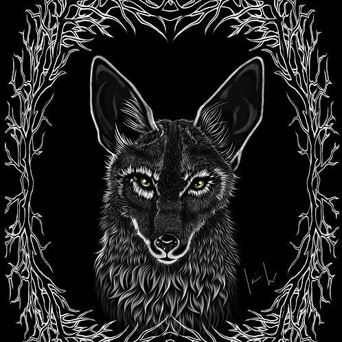 Coyote Mens T-Shirt