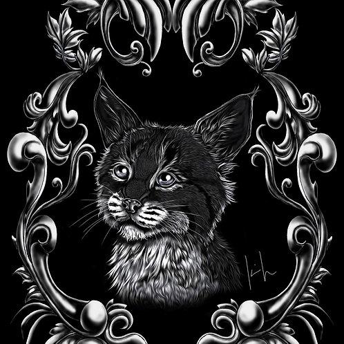 Bobcat Kitten Mens T-Shirt