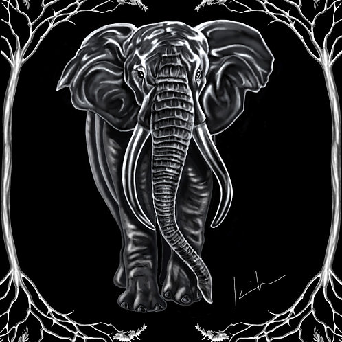 African Elephant Tee Shirt