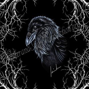 Common Raven Watermark.jpg