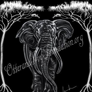African Elephant Watermark.jpg
