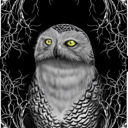Snowy Owl MensT-Shirt