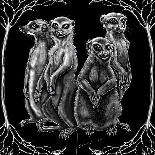 Meerkat Mens T-Shirt