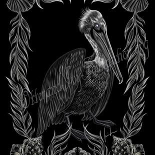 Brown Pelican Watermark.jpg